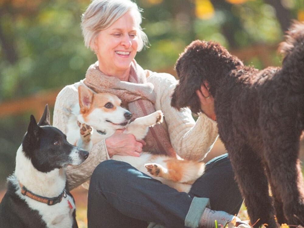 A Joyful Companion - Kelli's Musings - Do What You Love. My personal journey.